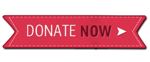 christmas-donate-button